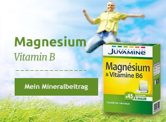 Juvamine Magnésium Vitamine B