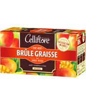 Celliflore Brucia grassi