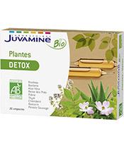 Juvamine Pflanzen Bio Detox