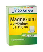 Juvamine Magnesio y vitamina B1, B2, B6