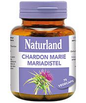 Naturland Mariendistel