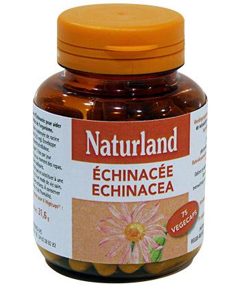 Naturland Echinac�e
