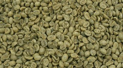 cafe-vert_405x225
